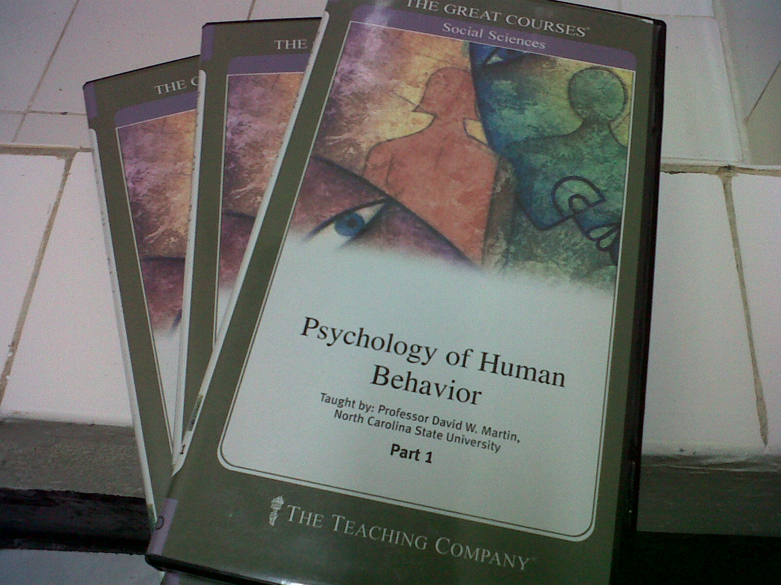 psychology of human behavior Both herbert a simon and anthony downs borrowed heavily from psychology to  develop more accurate theories of administrative behavior.